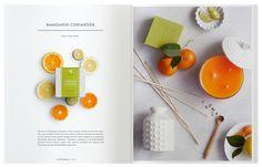 Dieline Thymes Catalog
