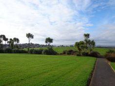 Moire Park Bush Walk in Auckland New Zealand