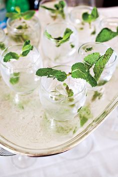 "Southern wedding cocktail ideas-- the leaves would carry on a ""green"" theme if there was one. And, cocktails :)"