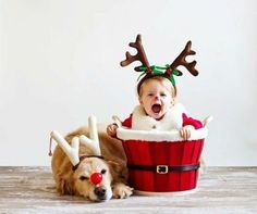 A adorable kid and a cute dog waiting for Santa