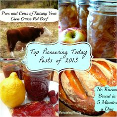 Top Pioneering Today Posts of 2013 « Melissa K. Norris Most viewed recipes, which one are you going to make?