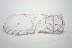 Comment dessiner un chat en le schématisant Plus