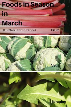 A Green and Rosie Life: Veg, Fruit and Foraged Foods in Season in March