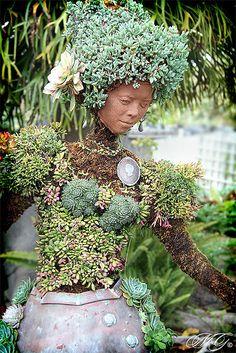 Succulent lady at San Diego Botanical Garden.