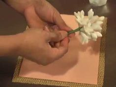 Kaye Hartman of Petal Crafts shows each step to create these realistic flowers from gumpaste. The same techniques can be used with polymer clay, cold porceli...