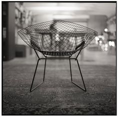 Wire Diamond Chair, Harry Bertoia for Knoll