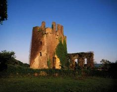 Kilcash Castle in Ireland - Design Pics Inc/Rex Shutterstock/Rex Features/Rex Images