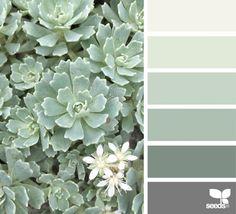 New bedroom paint colors green design seeds ideas Design Seeds, Nature Design, Green Paint Colors, Green Shades Of Paint, Mint Green Paints, Sage Green Paint, Deco Nature, Bedroom Green, Bedroom Neutral