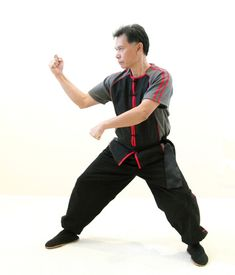 Beijing Imports where Martial Arts experts buy their traditional equipment. Tai Chi Clothing, Black Frog, Traditional Looks, Red Stripes, Beijing, Martial Arts, Dragon Ball, Perfect Fit, Sleeves
