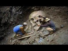 The Nephilim skeletons weren't termed giants or sons of God for no reason. The facts did exist, strong enough to take people aback. The fallen angels are. Paranormal, Giant Skeletons Found, Human Giant, Nephilim Giants, Nephilim Bones, Human Skeleton, Archaeological Finds, Archaeological Discoveries, Ancient Mysteries