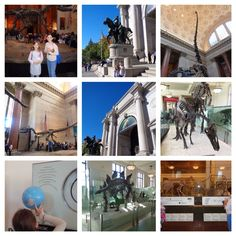 10-12-15/American Museum of Natural History/Dinosaur floor