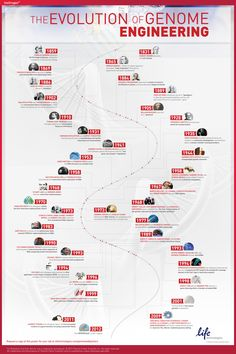 Evolution of Genome Engineering Poster | Thermo Fisher Scientific