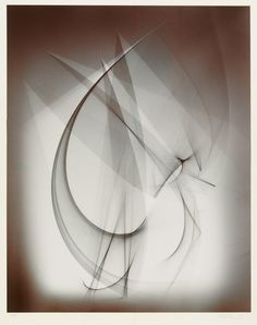 Untitled Photogram, Daniel Ranalli