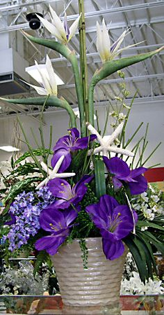 pinned for the white bird of paradise flowers -