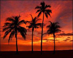 Fire Sky - Hollywood Beach = Florida