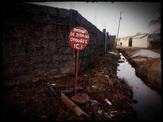 Être un écologiste en Guinée, un parcours de combattant
