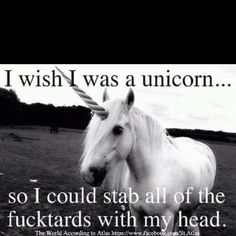 Funny pictures about I wish I was a unicorn. Oh, and cool pics about I wish I was a unicorn. Also, I wish I was a unicorn. I Am A Unicorn, Last Unicorn, White Unicorn, Unicorn Art, Unicorn Club, Unicorn Horns, Unicorn Fantasy, Magical Unicorn, I Smile