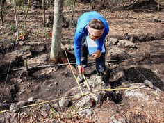Digging the Secrets of Ancient Maya Gardeners in the Yucatan