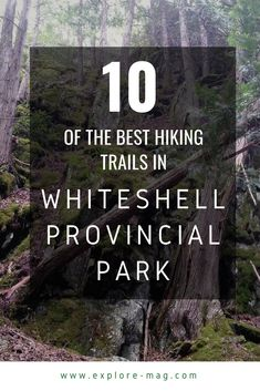 10 of the Best Hiking Trails in Whiteshell Provincial Park Centennial Trail, Visit Canada, Canada Eh, Cross Country Skiing, Day Hike, Canada Travel, Hiking Trails, Wilderness, Places To See
