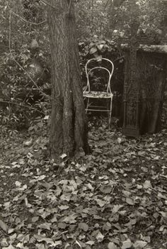 Josef Sudek - 'A Walk in the Magic Garden' Such a beautiful photograph