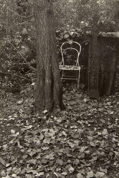 Josef Sudek - 'A Walk in the Magic Garden'