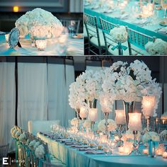 Tiffany Blue Themed Wedding, white orchid centerpiece, white hydrangea centerpiece