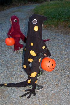 Salamander costume! Hastings Reserve News: 10/01/2010 - 11/01/2010