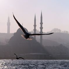 Fed onto Best Istanbul Pictures Album in Travel Category Mekka Islam, Beautiful World, Beautiful Places, Beautiful Pictures, Istanbul Pictures, Beautiful Mosques, Islamic Architecture, Islamic Pictures, Middle East