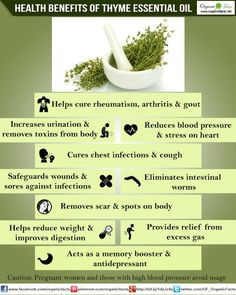The health benefits of Thyme Essential Oil can be attributed to its properties like anti spasmodic, anti rheumatic, anti septic, bactericidal, bechic.