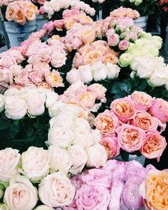 Having a very lovely rosy morning with @rosielondoner at the @sfflowermart #sanfrancisco #rosesonrosesonroses #heaven