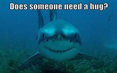 I Hug With My Teeth