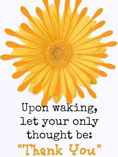 """Upon waking let your only thought be: """"Thank You"""""""