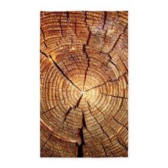 CROSS SECTION OF AN OLD TREE 3x5' Area Rug on CafePress.com
