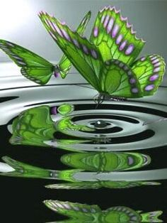 A beautiful green butterfly Beautiful Bugs, Beautiful Butterflies, Beautiful Pictures, Papillon Butterfly, Butterfly Kisses, Butterfly Wings, Green Butterfly, Butterfly Flowers, Butterfly Pictures