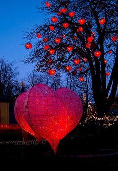 hearts and more hearts - Ana Rosa reblogged from caileyjordanhouse