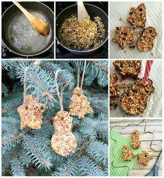 Des cookies à oiseaux
