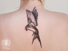Tattoo par Jean-Sébastien HvB chez David Tattoo Pertuis Luberon Provence Vaucluse Sud France #Tattoo #Tatouage #Fin #Graphic #Bird #Swallow #Hirondelle #Sketch #Crayon #Dessin #Liberte #Freedom #Back #Nuque #Sexy  #Blackandgrey #Noiretblanc #Fineline #Fineart #Blackwork #Dot #Dotart #Dotwork More Art & Tattoos : heinrichvonb.tumblr.com Facebook : Jean-Sebastien HvB Pinterest : hvbtattoo Instagram : jeansebastienhvb Mail : hvbtattoo@gmail.com