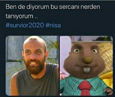 SURVİVOR - herkese merhabalar aq - Wattpad Ridiculous Pictures, Funny Share, Im Depressed, Origami Paper Art, Harry Potter Anime, Just For Fun, Really Funny, Funny Photos, Bff