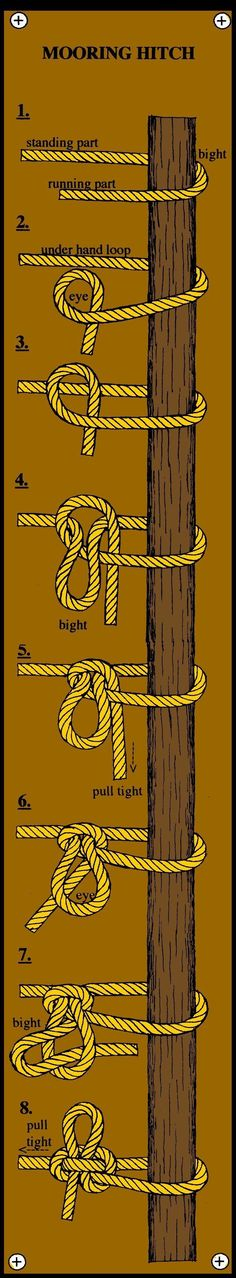 The knot I use most of the time while tying up a horse.  Also know as a quick release knot.