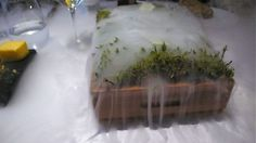 "Dry Ice Forest Centerpiece Poured water on top of the ""forest"" of moss. Dry ice was hidden underneath so that the ""forest"" billowed scented smoke over the tabletop."