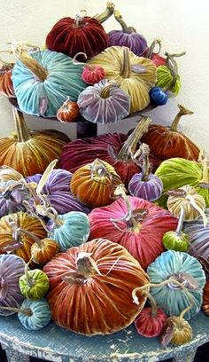 Hill Country House: Velvet Pumpkins with real pumpkin stems
