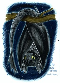 HTTYD-fanarts : Photo