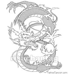 Chinese Zodiac Tattoo Designs Tattoos 1000aposs Of And picture 14032