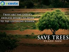 Save #Trees Save Yourself