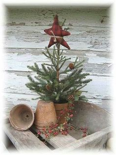Pine tree in a pot.with a stuffed star. - love the star tied on the top. This may be the tree we do for our simple Christmas this year. Christmas Porch, Prim Christmas, Merry Little Christmas, Outdoor Christmas, Country Christmas, Simple Christmas, Xmas Tree, Winter Christmas, Vintage Christmas