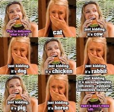 I didn't realize the dairy farmers were so triggered until I started posting vegan memes. Now I have hundreds on my page so let's have some fun! Quotes Vegan, Vegan Memes, Vegan Funny, Vegetarian Quotes, Vegan Facts, Why Vegan, Vegan Animals, Stop Eating, Just Kidding