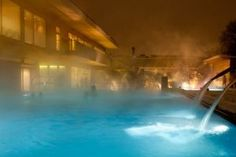 Do you want to leave the dreary weather or the pre-Christmas stress behind you? So what can you do if on days like those you prefer warm water, sauna & spa? Christmas Tress, Pre Christmas, Heart Of Europe, Relaxing Day, Hot Springs, Vienna, Budapest, Thermal Baths, Cruise