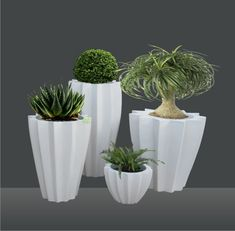 Get the planter you've always wanted from Yuccabeitalia. We have many planters available from pots to boxes in addition to hanging or wall planters. Flower Planters, Hanging Planters, Garden Planters, Herb Garden, Flower Pots, Planter Pots, Wall Planters, Home And Garden, Buy Flowers