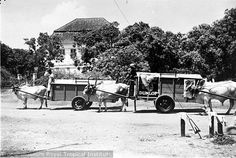 Unknown date Surabaya, Old Pictures, Antique Cars, Transportation, History, Vehicles, Outdoor, Dutch, Roots