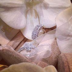 I gioielli per la sposa  Oro bianco, diamanti e perle sono protagonisti di gioielli senza tempo creati per andare dritti al cuore di una donna. #wedding #WeddingInspirations